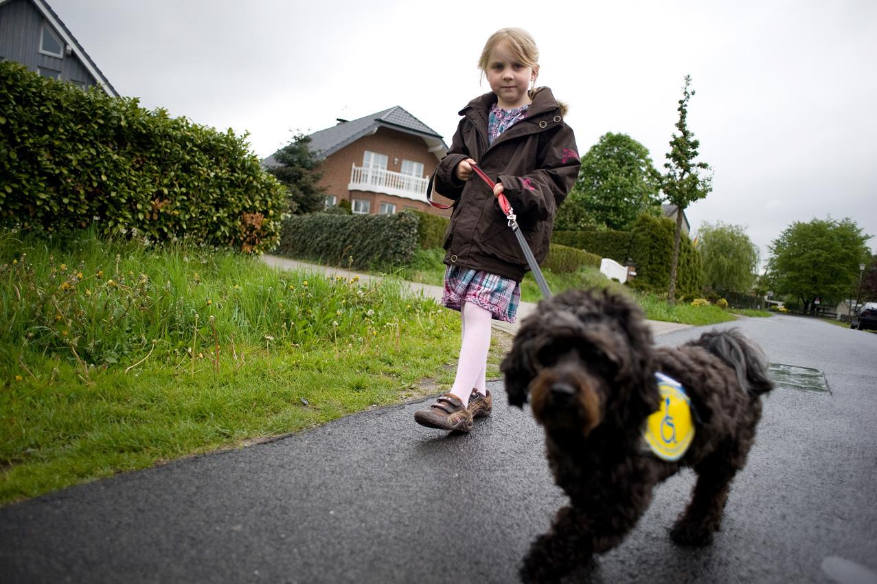 Das Leben mit einem Diabethikerwarnhund. Luisa hat Diabetes. Um mit der Krankheit besser leben zu können bekam sie von ihren Eltern einen Diabethikerwarnhund. Der Hund erkennt schon am Atemgeruch wenn der Blutzuckerspiegel sinkt. Ohne ihn müsste alle 10 Minuten gemessen werden. Luisa geht mit Bolle gassi, der seine Behindertenbegleithund-Weste an hat.