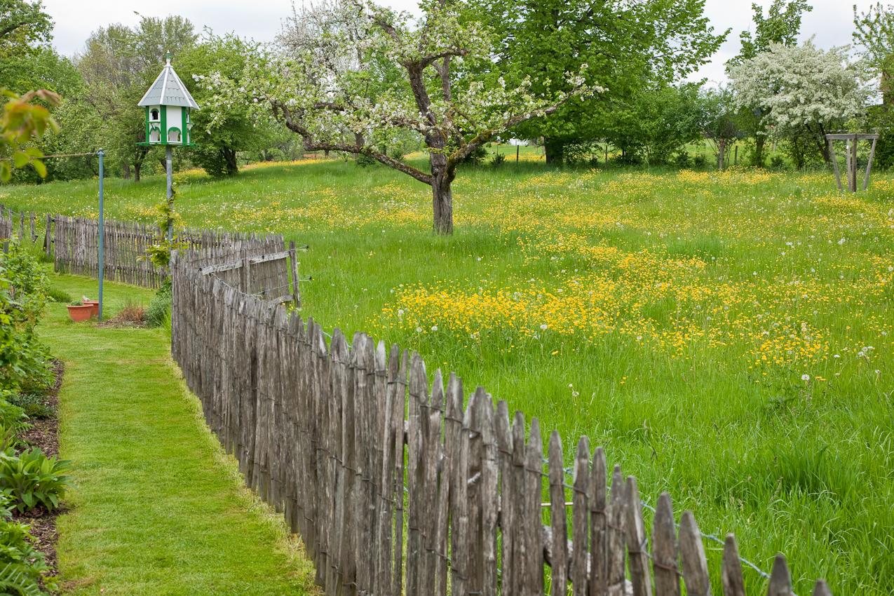 Ein Frühlingsgarten in Lindau am Bodensee bei leichtem Regen am späten Nachmittag des 7. Mai 2010