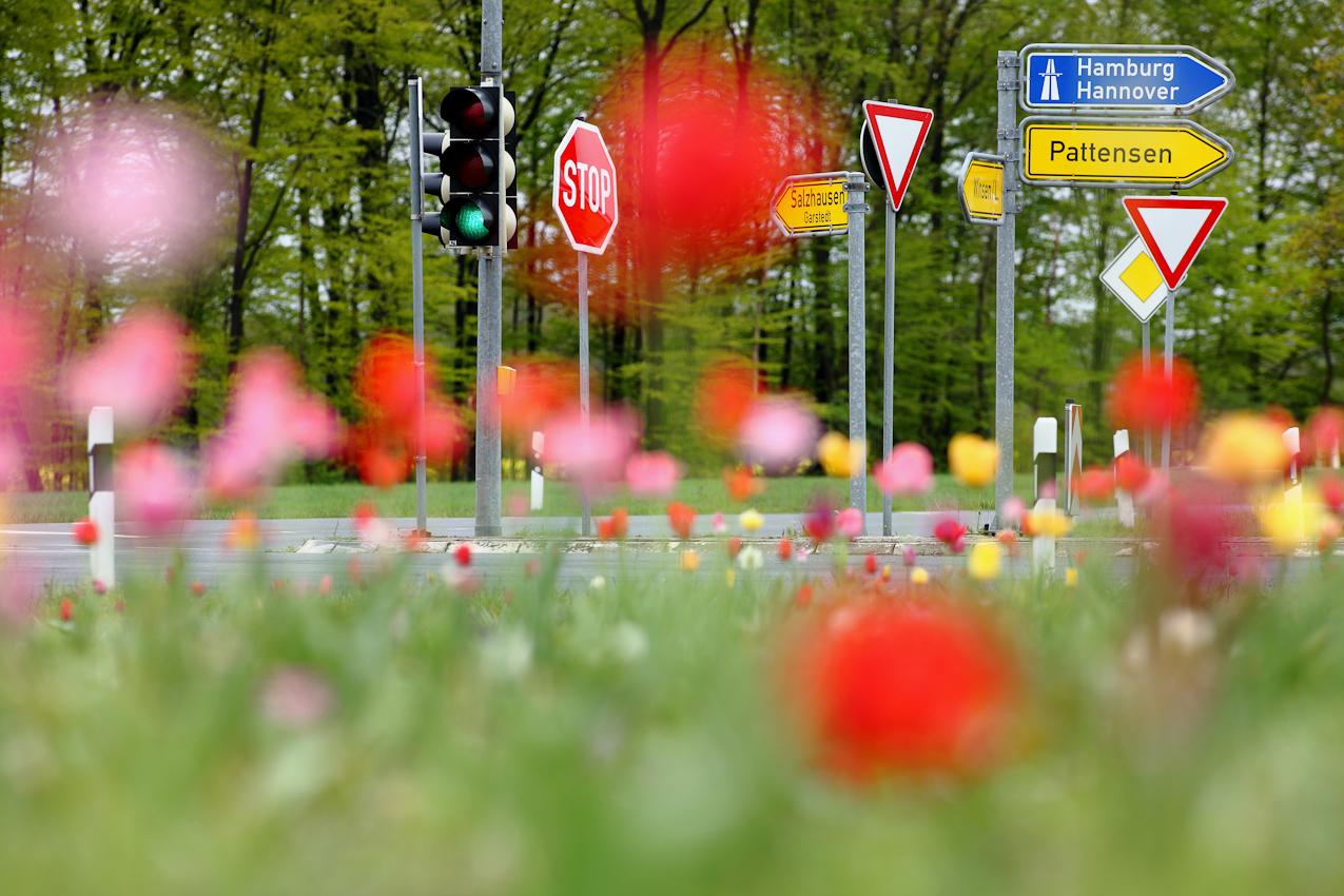 <p>Winsen/Luhe, Bahlburg, Pattensen, am 07.05.2010 Thema: 'Ein Tag Deutschland' Foto: Eine Kreuzung (L234/K37) zwischen Bahlburg und Pattensen in Niedersachsen. Sonst nichts. Ein ganz normaler Ort - wie Tausende in Deutschland. Bildtext (BU): 13:51 Uhr.</p>