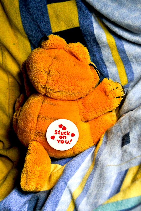 Auf der A2 am 07.05.2010 um 08:23 Uhr: Garfield auf dem Bett von Uwe in der Schlafkabine seines LKWs.