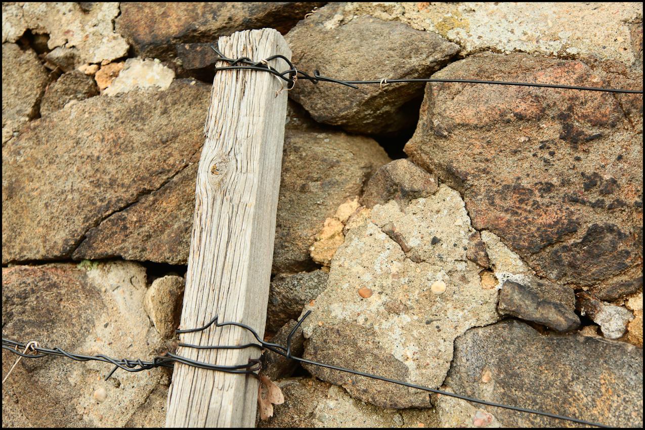 Dies sind die zahlreichen Befestigungen um und im Weinberg zu Pillnitz, an denen die Rebstöcke an den zahlreichen Sandsteinmauern befestigt  werden.