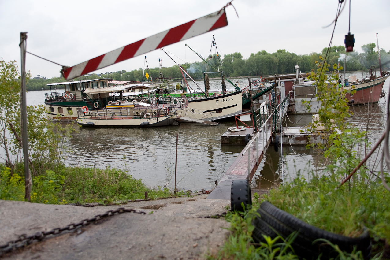 Die Fährschiffe Krokodil, Krokolino und Frika liegen im Dock und warten auf ihren Einsatz.