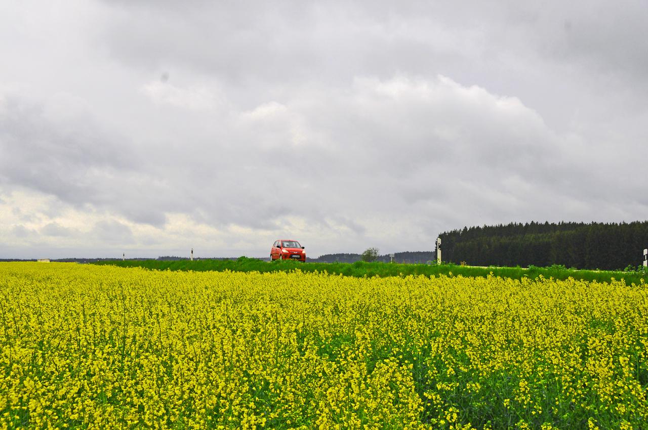 Ein roter PKE in der Bildmitte fährt am Morgen auf der B 304. Davor ein gelbes Rapsfeld und ein Grünstreifen. Der Wolkenhimmel uberspannt das ganze Bild. Ein Waldstück ist rechts zu sehen.