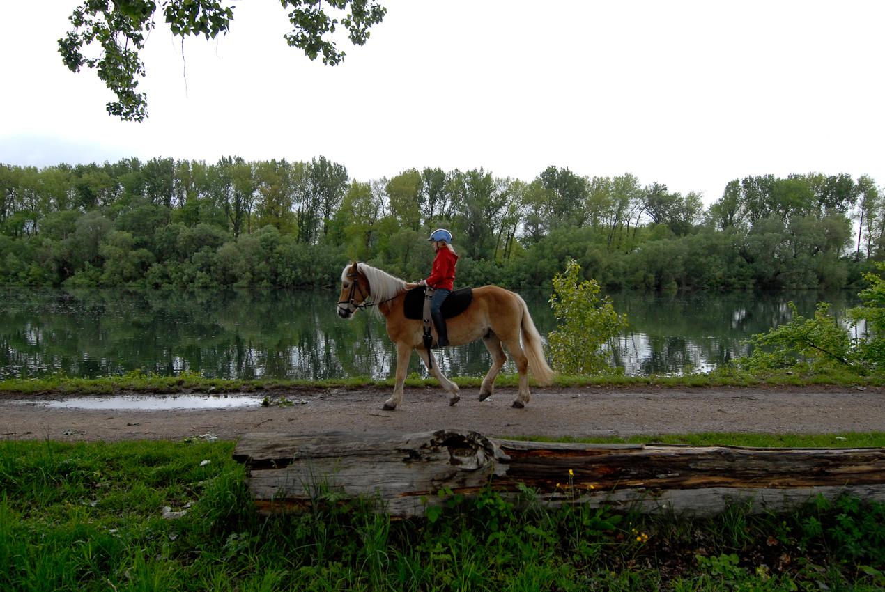 Landschaft, Mensch und Tier in vollkommener Harmonie beim Ausritt in der Nonnenaue nahe Heidesheim/Rheinhessen.