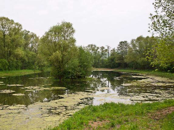 Biosphärenreservat Bliesgau 10