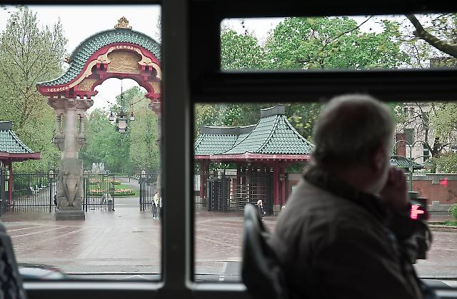 Sightseeing im Doppeldeckerbus 2