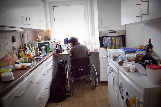 Behindertenbegleithund 2